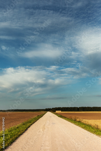 Fototapety, obrazy: Gravel road in countryside.