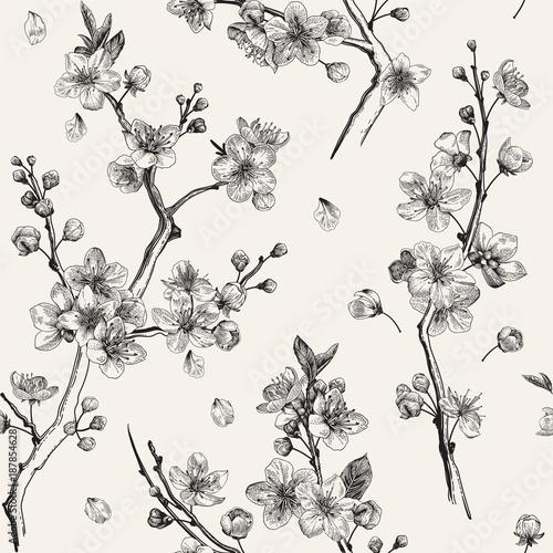 Sakura. Seamless pattern. Cherry blossom branches. Vector ...