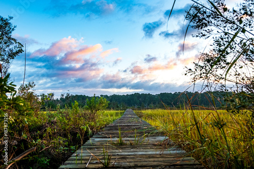 wooden on pier on south carolina low country marsh at sunrise with cloudy sky Wallpaper Mural