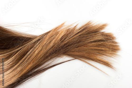 Fotografie, Tablou Vivo sempre insieme ai miei capelli