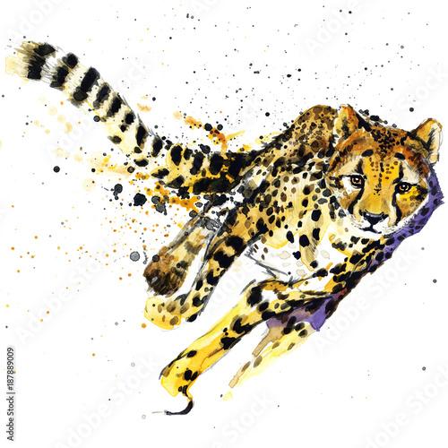 Photo cheetah watercolor  illustration