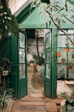 Old Greenhouse, In European Style, Stone And Glass Walls Covered With Greenery