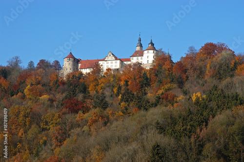 Fotografie, Obraz  Schloss Langenburg