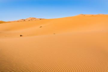 Fototapeta na wymiar Sahara Desert, Erg Chebi dunes. Merzouga, Morocco