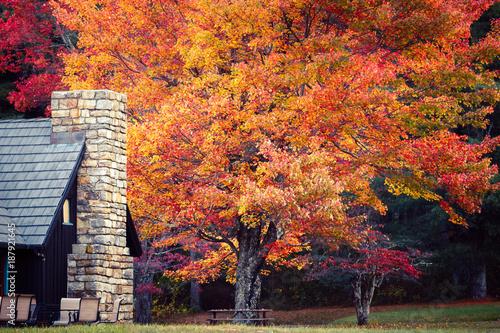 Fototapeta  Colors of Autumn at Elkwallow Wayside. Shenandoah National Park.