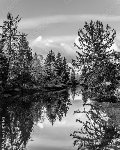 Winter Afternoon, Jessie Slough, Grays Harbor County, Washington, 2017 Canvas Print