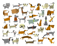 Cute Dogs Collection, Sketch F...