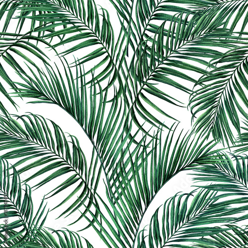 Watercolor Painting Coconutpalm Leafgreen Leave Seamless Pattern BackgroundWatercolor Hand Drawn