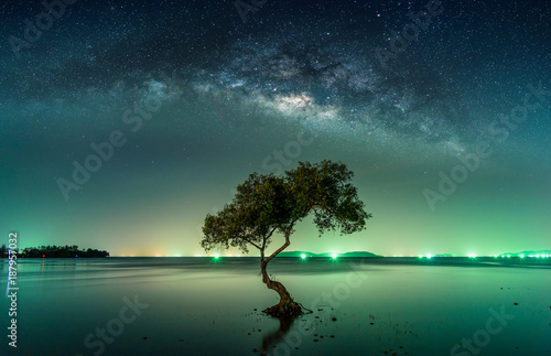 Foto auf Gartenposter Kosmos Landscape with Milky way galaxy. Night sky with stars and silhouette mangrove tree in sea. Long exposure photograph.