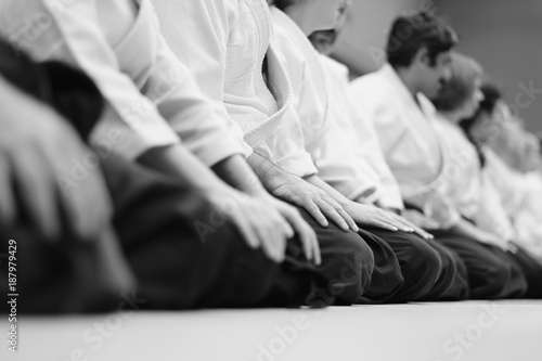 Sensei students sitting in a row on the mat at a seminar on aikido Wallpaper Mural
