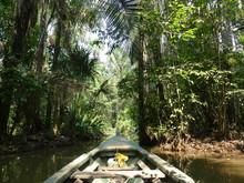 En Amazonie Au Pérou