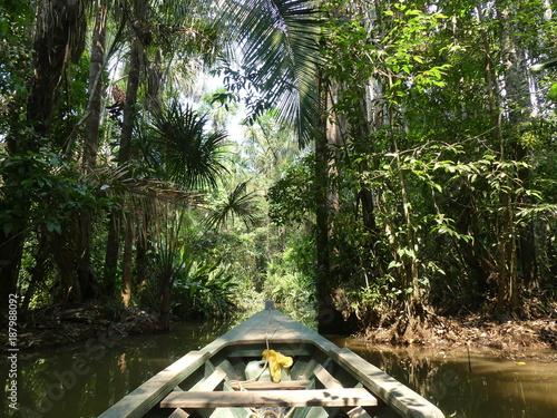 En Amazonie au Pérou Canvas Print
