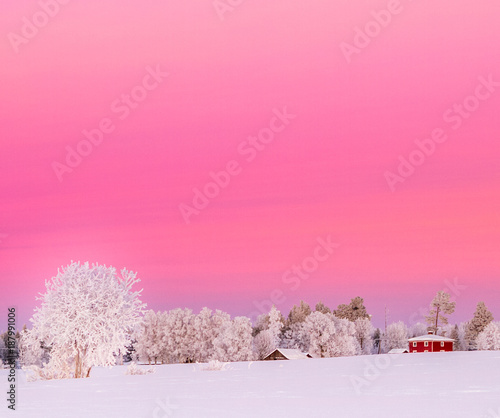 Fotobehang Candy roze sunset in winterwonderland