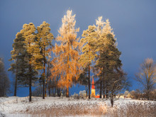 Winter Landscape With Snow Covered Trees And The Sun.