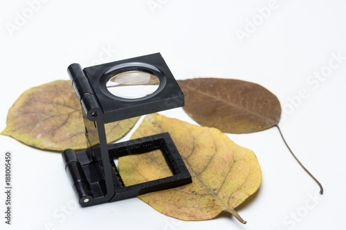 Fotografía  lupa cuenta hilos sobre hojas secas