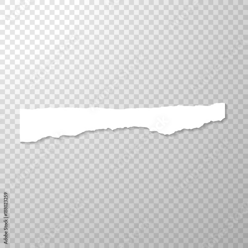 Long Horizontal Torned Off Piece Of Paper Empty Isolated Edge On Transparent Background