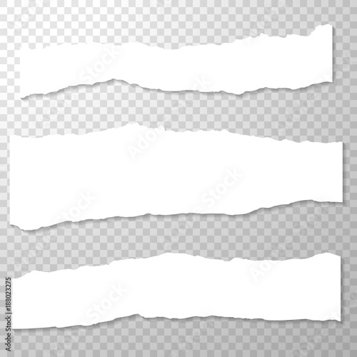 long horizontal torned off pieces of paper empty isolated paper