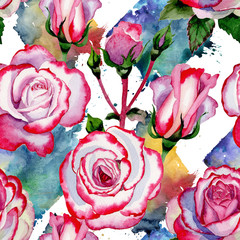 Fototapeta Do sypialni Wildflower hybrid rose flower pattern in a watercolor style. Full name of the plant: hybrid rose, hulthemia, rosa. Aquarelle wild flower for background, texture, wrapper pattern, frame or border.