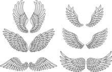 Heraldic Wings Set For Tattoo ...