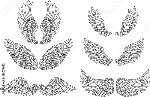 Foto  Heraldic wings set for tattoo or mascot design