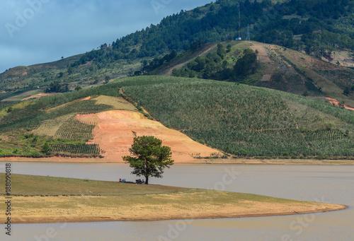 Foto op Aluminium Khaki Landscape of Dalat, Vietnam