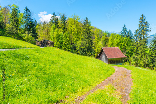 Poster Lime groen Rural landscape. Pastoral in the mountains of Switzerland. A house with a red roof on a green grass meadow.