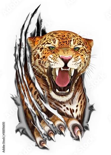 Jaguar claws tearing the fabric Wallpaper Mural