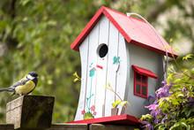 Vogelhäuschen Meise