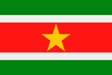 Suriname Flag Vector Flat Icon
