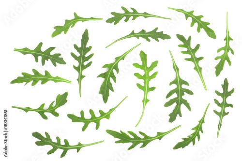 Green fresh rucola or arugula leaf isolated on white background Canvas Print