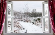 Beautiful Snow Path Scene Through An Open Window