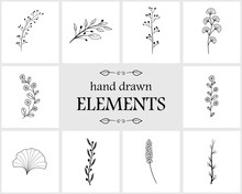 Hand Drawn Floral Logo Elements And Icons