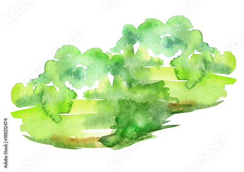 In de dag Lime groen Watercolor abstract green spot, blot. Colorful vintage background, reminiscent of a forest landscape. Green outlines of the silhouette of the forest.