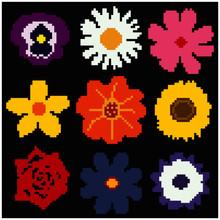 Vector Set Of Pixel Flowers On Black Backround