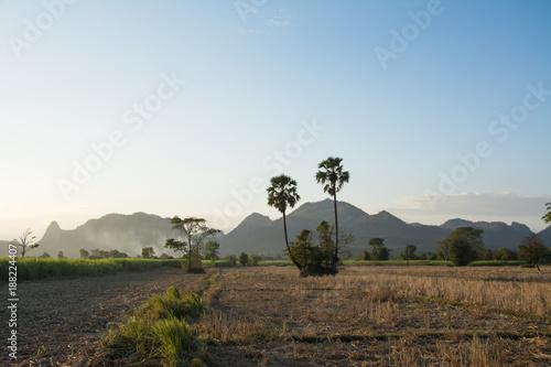 Zdjęcie XXL Góra krajobrazowy widok z lasowym tłem