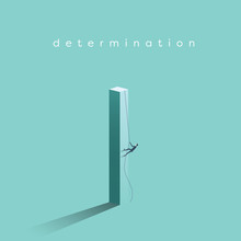 Business Determination And Gro...