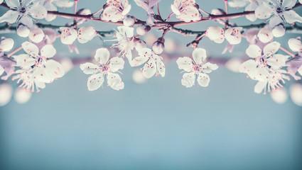 FototapetaPretty cherry blossom floral border on pastel blue background