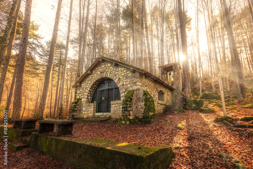 Fototapety, obrazy: Small chapel in forest at Vizzavona in Corsica