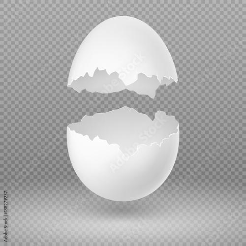 Fotografie, Obraz  Opened white egg with broken shell isolated vector illustration