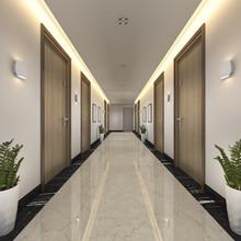 3d Rendering Modern Luxury Woo...