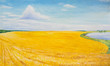 Summer landscape with yellow field. Oil painting.