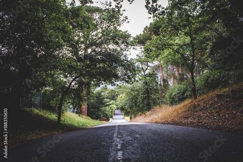 Zdjęcie XXL Moody Road