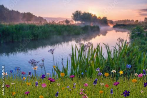 Foto auf Gartenposter Fluss Summer landscape with river