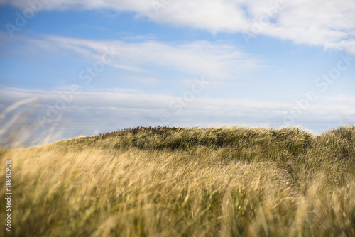 Fotobehang Cultuur Scenic view of grassy field against cloudy sky