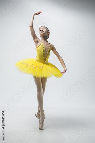 Young classical dancer on white background. Billede på lærred