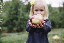 Portrait Of Girl Holding Apple...