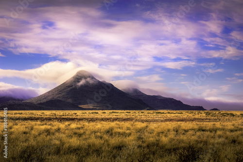 Poster Purper South Africa landscape