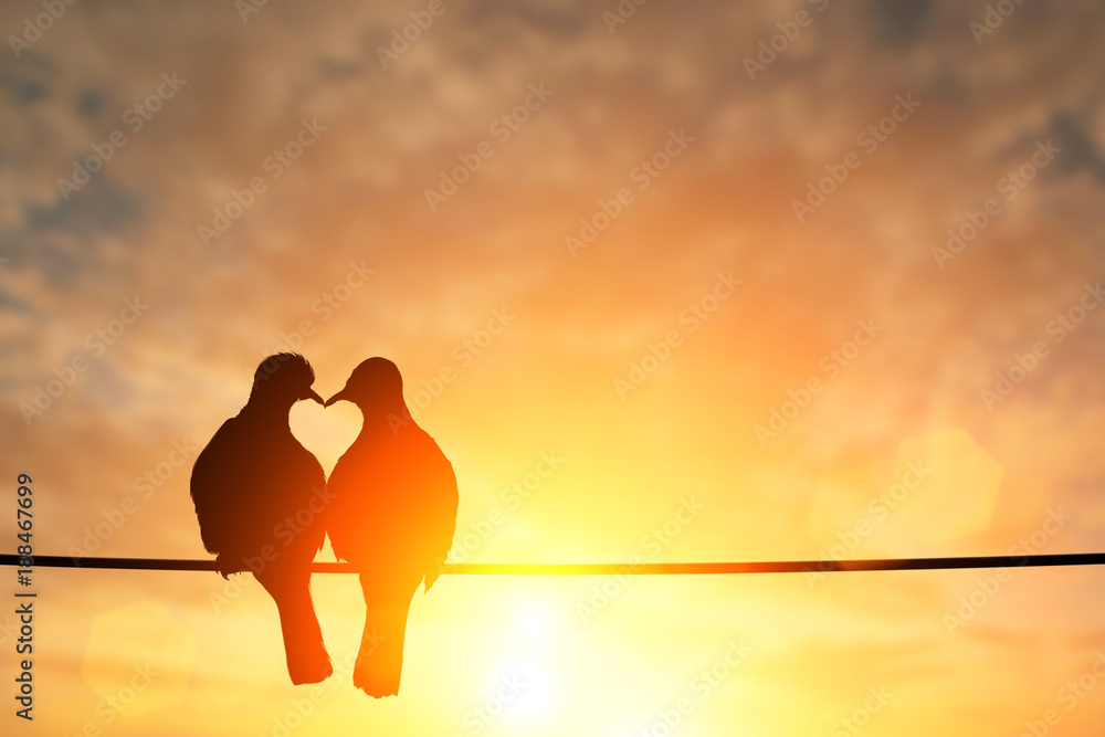 Fototapeta silhouette of bird in heart shape on pastel background and Valentine's Day