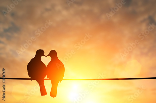 Poster Vogel silhouette of bird in heart shape on pastel background and Valentine's Day