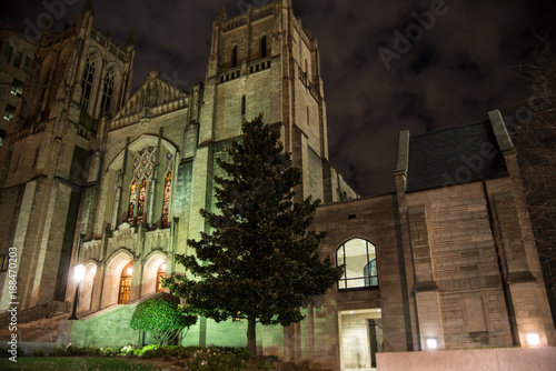 Fotografie, Obraz  Gothic Cathedral at Night